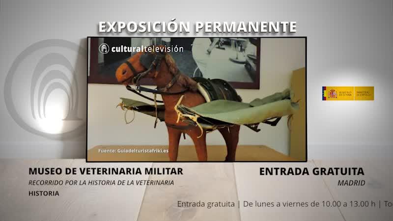MUSEO DE VETERINARIA MILITAR